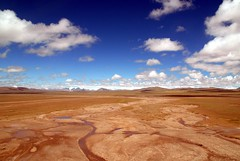 Riverbed (Luo Shaoyang) Tags: china blue wallpaper sky nature yellow landscape stem nikon scenery vivid dry tibet riverbed microsoft geography    madeinchina    luo  naturesfinest     nikond200        landscapephotos aplusphoto ultimateshot luoshaoyang chinageography