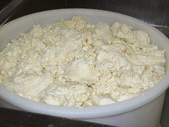 Fresh curds...soon to be Asiago cheese (Food Philosophy) Tags: venice italy asiago altoadige speck chefmark foodphilosophy jenniferiannolo culinarypodcastnetwork gildedfork
