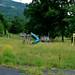 Overgrown playground equipment