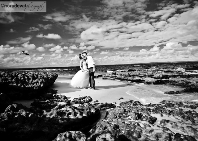 Hyams Beach Wedding 49