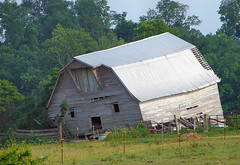 Death Throes (cindy47452) Tags: old barn sad indiana faded unwanted dying unloved forpaul washingtoncounty deaththroes