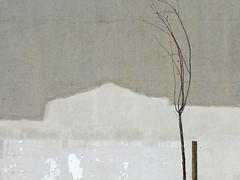lisboa - lisboa uma_destas belém ai... morta vazio arte umadestas portodelisboa museu popular estaca
