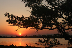 (rafaelgomess) Tags: sunset pordosol sun lake sol praia beach silhouette riodejaneiro lago landscapes natureza verão lagoa paisagens entardecer praiaseca regiaodoslagos