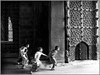 Running through the Gate of Golkonda Fort, Hyderabad (Sukanto Debnath) Tags: 070707 hyderabad india sukantodebnath golkonda kids bw unicef anawesomeshot blackribbonbeauty abigfave jesters diamondclassphotographer sony f828 sukanto debnath run motion blur action krishlikesit