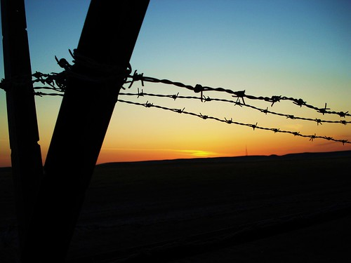 Barbed Wire Sunrise by Army Man Chaz