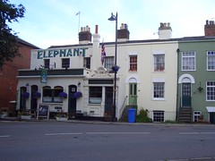 Elephant, Faversham
