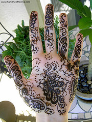 Love Kir-- I mean, Love Mehndi