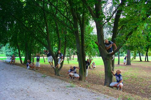 eleven BESTO in a park...