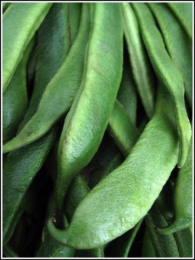 emperor beans copy