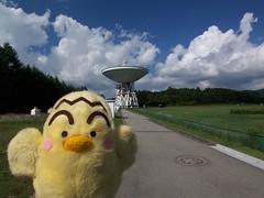 45m radio telescope