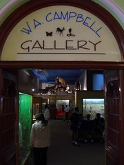 durban natural history museum - gallery