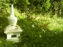 Vajracitta's stupa in the garden 3