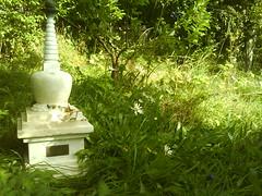 Vajracitta's stupa in the garden 3