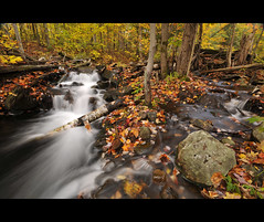 Forest Falls (these are only words) Tags: park longexposure autumn orange ontario canada fall wet water leaves yellow rock forest waterfall rich waterfalls theseareonlywords