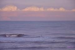 Mar (-Ana Lía-) Tags: nikon naturaleza atardecer mar cielo olas inmensidad amigos flickrs mardelplata argentina aprehendiz azul azulcobalto luz blue water mare analialarroude