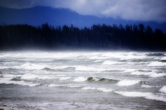 consumed (bluechameleon) Tags: ocean trees mist clouds waves wind vancouverisland pacificocean longbeach tofino respira pacificrimnationalpark explored bluechameleon swallowmewhole artlibre sharonwish sempreesempre
