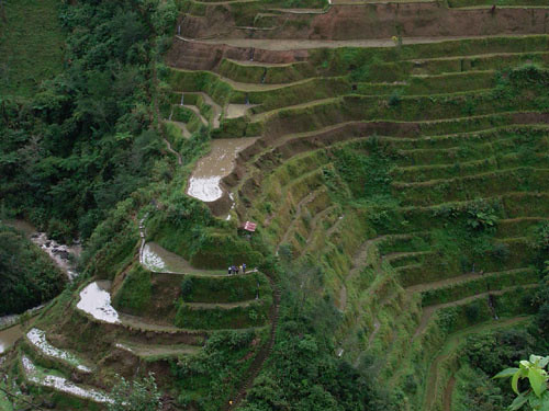 0404-banawe-rice-terraces(Philippines)