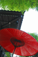 Red Japanese Shade