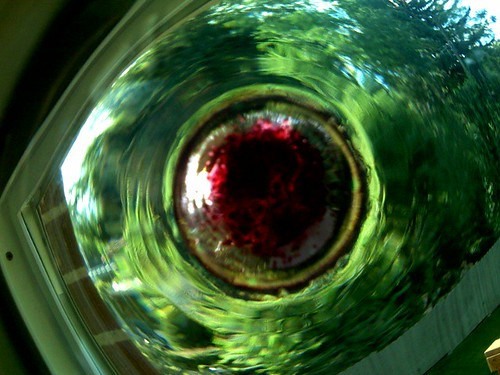 Looking Through a Used Wine Glass