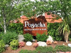 Pogacha