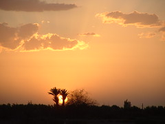 Targa Sunset, Marrakesh