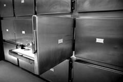 Series (manon.paradis) Tags: light metal death blackwhite series surgical morgue autopsy investigation coroners