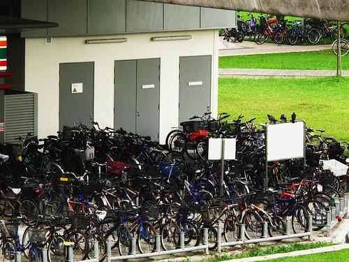 IMG_0223 Bicycles , Lakeside MRT Station ,Singapore