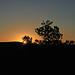 Sunrise On The Beas Lewis