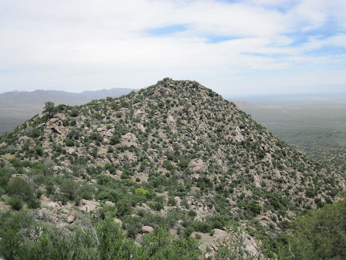 Large Hill In the Organ Mountains