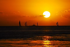 Lisbon sunset (pedrosimoes7) Tags: portugal sailing lisbon silhouettes sailboats bugio silhuetas thecontinuum scoreme39 1on1landscapes 1on1sunrisesunsets 1on1sunrisesunsetsphotooftheweek ilustrarportugal oneofakindimages 1on1sunrisesunsetsphotooftheweekjanuary2011