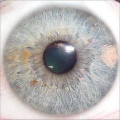 Очки с сеточкой для зрения цена