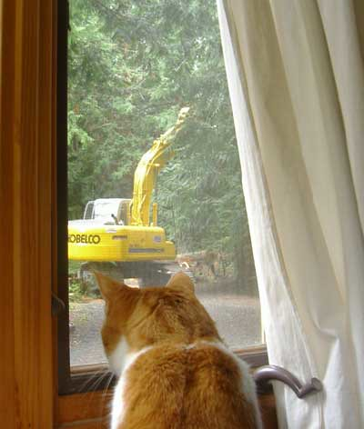 brady watches the excavator