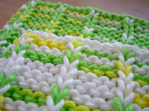 Washcloth - Lemon Lime Close