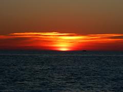 simple pleasure ((`._.[Phoenix Ocean]._.)) Tags: fiveflickrfavs