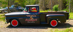 1961 Chevy pickup (kenmojr) Tags: auto chevrolet car truck pickup newbrunswick chevy moncton hotrod 1961 atlanticnationals kenmo krm
