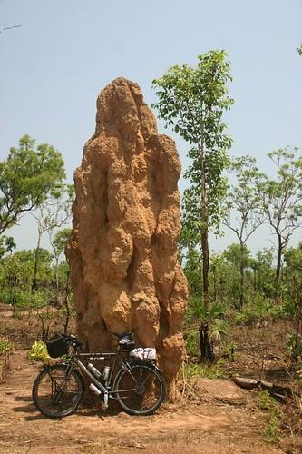 Gigantic termite mound, NT.