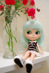 Jelly Poses With Roses