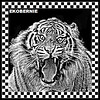 WILD KINGDOM TIGER59BLACK AND WHITE TATTOO EKOBERNIE black and