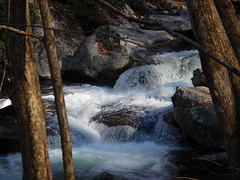 rushing stream (2)