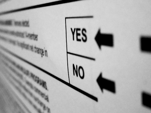 Voting Ballot: Yes or No?