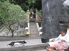 Oost Bali (www . SpongeRob.nl) Tags: bali hongkong gili ubud trawangan manggis gilis greenfields scallywags alila spongerobnl