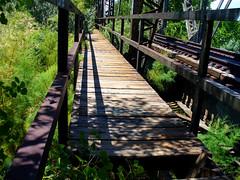 Railroad Bridge Walkway (Icky Pic) Tags: railroad bridge fountain river wooden colorado footbridge steel pueblo walkway planks beams animal31