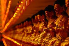 10,000 Buddhas Monastery (... Arjun) Tags: 15fav hk 1025fav 510fav hongkong nikon asia dof bokeh 100v10f monastery 2550fav 50100fav d200 1000v100f 10000 shatin buddhas 2007 10000buddhasmonastery 18200mmf3556g bluelist 100200fav thebestvivid