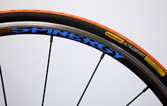 Wheel - ABC Challenge (lutonian) Tags: colour spokes wheels continental tyre ultrasport alloy wornout niples spinergy abcchallenge 700x23c