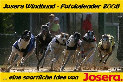 QL9T4161_Josera Windhund Fotokalender 2008 400px