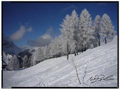 Croda (Niky Pasqualini) Tags: italy white snow italia neve inverno alpi bianco freddo sci dolomiti vacanze monti nevicata ghiaccio sciare