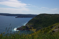 Newfoundland (pbr42) Tags: ocean canada newfoundland landscape coast atlantic signalhill
