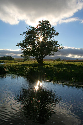 """""""Rivers of the Windfall Light""""     (Dylan Thomas)"""