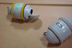 IMGP0305