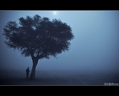 Waiting for you .... (Sh@dows) Tags: trip mist fog canon landscape is photo shadows desert you weekend uae 7d l friday ef f4 waiting4 shdows sarin waitingforyou 24105mm waiting4u  ef24105mmf4isl sarinsoman  morningshoot canon7d nizhal
